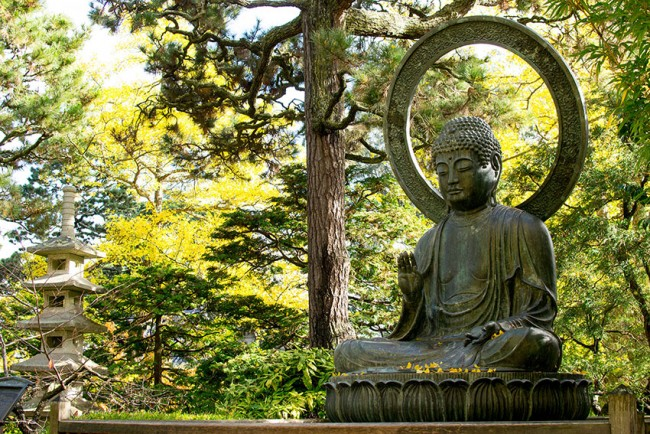 Photo: statue of Buddha with tree behind